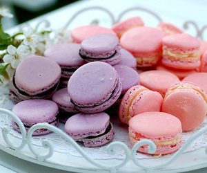 food, pink, and purple image