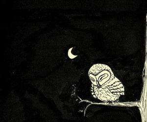 owl, night, and moon image
