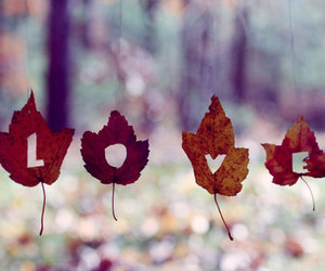 love, leaves, and autumn image