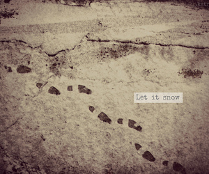 photography, steps, and snow image