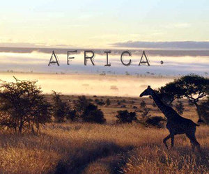 africa, beautiful, and lovely image