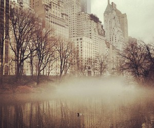 amazing, Central Park, and city image