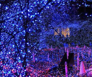 light, blue, and christmas image