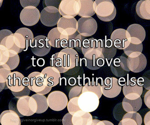 fall in love, quote, and text image