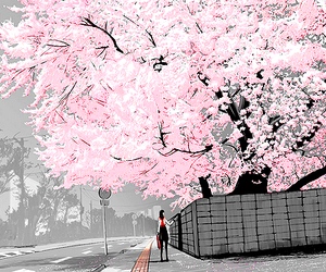 anime, sakura, and tree image