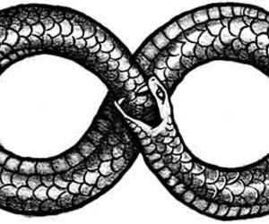 snake, infinity, and forever image