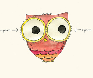 owl, cute, and drawing image