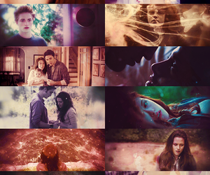 twilight, love, and breaking dawn image
