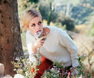 twiggy, model, and flowers image