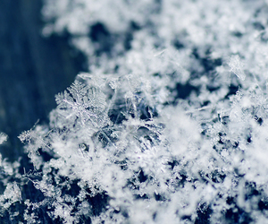 snow and snowflake image