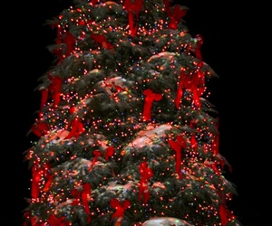 beautiful, christmas, and red image