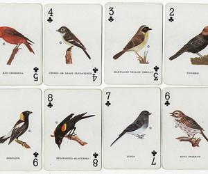 bird, vintage, and art image