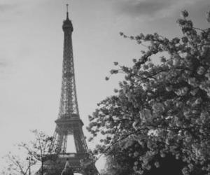 b&w, hipster, and paris image