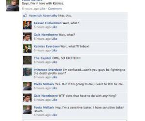 capitol, facebook, and katniss image