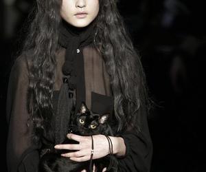 cat, fashion, and black image