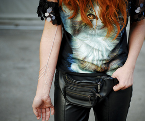 cat, close up, and fashion image