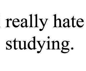hate, school, and study image