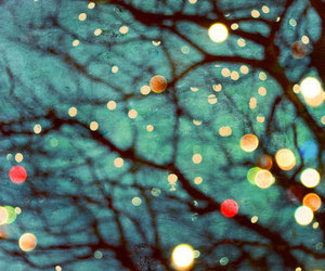 light, tree, and cool image