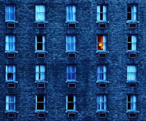blue, windows, and building image