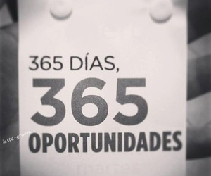 opportunity, frases, and 365 image
