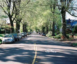 green, road, and street image