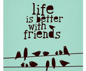 friends, life, and bird image