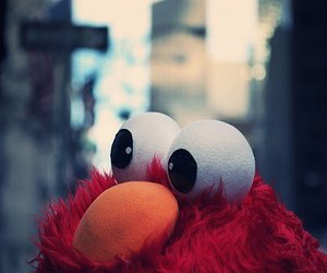 elmo, red, and photography image