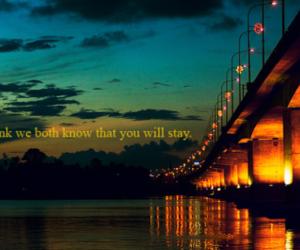 light, quote, and bridge image