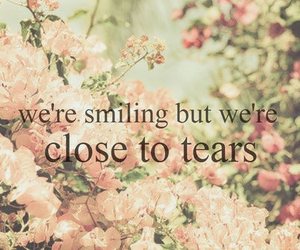 tears, smile, and quote image