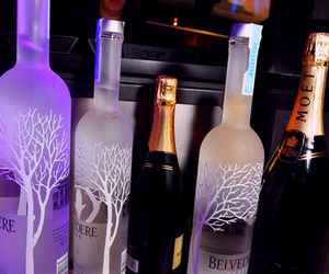 party, luxury, and alcohol image