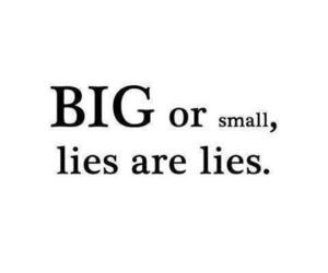 lies, big, and quotes image