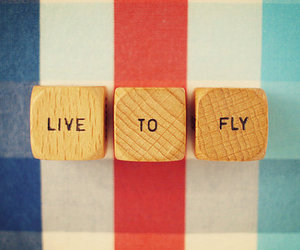 fly, live, and Dream image