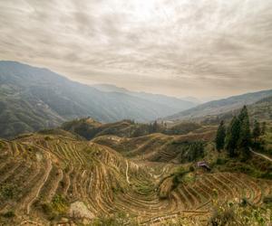 asia, bleak, and china image