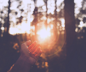 sun, photography, and hand image