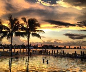 beach, sunset, and palms image
