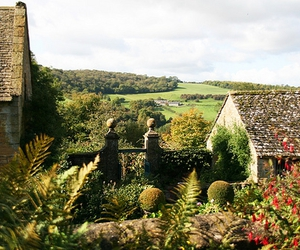 gloucestershire, plants, and green image