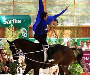 horse show, horses, and vaulting image