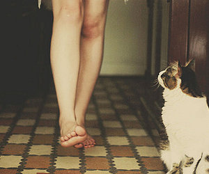 bare foot, girl, and photography image
