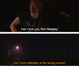 ed sheeran, concert, and funny image