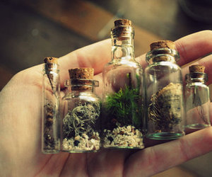bottle and nature image