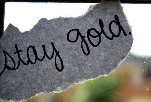 Gold Johnny Outsiders Ponyboy Stay Inspiring Picture On Favim Com Just remember its stay gold, ponyboy. an allusion to robert frost famous poem. gold johnny outsiders ponyboy stay