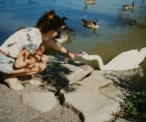 girl, Swan, and duck image