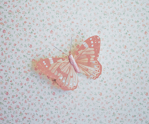 butterfly, pink, and floral image