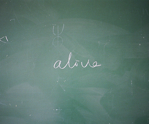 alive, board, and text image
