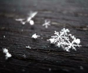snow, snowflake, and christmas image