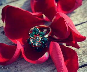 jewelery, red, and ring image