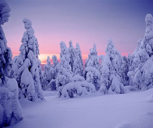 finland, scenery, and winter image