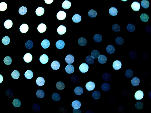 blue, dots, and lights image