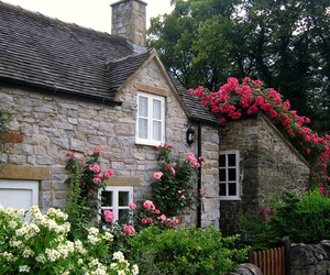 cottage, flowers, and cute image