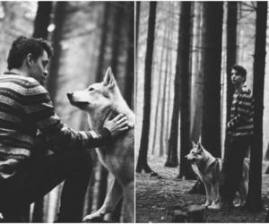 black, black and white, and dog image